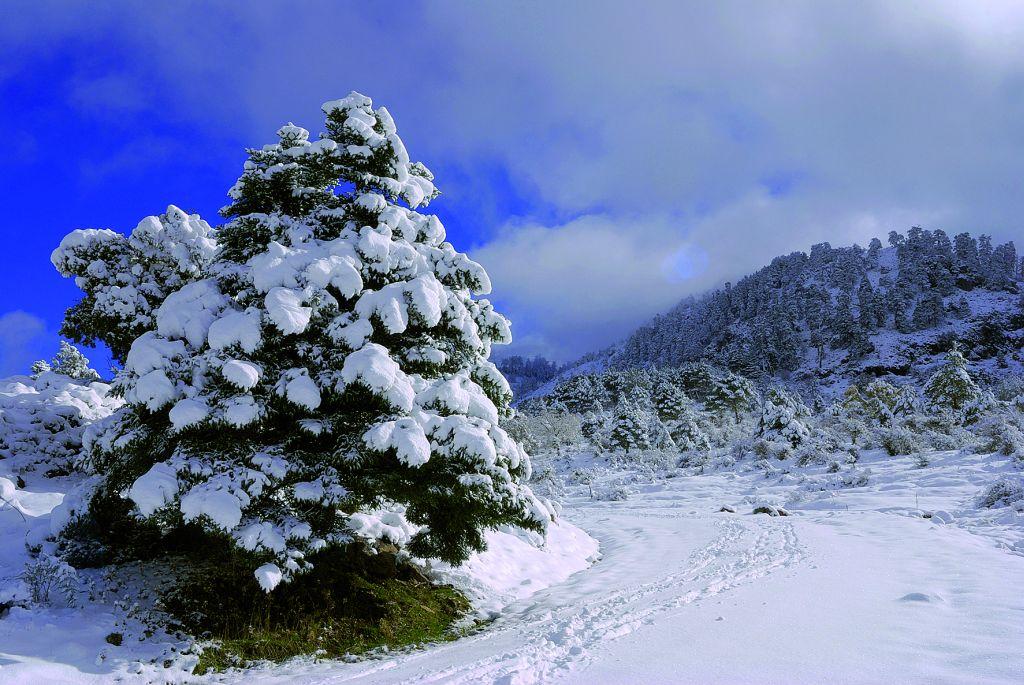 Parque Sierra Nieves